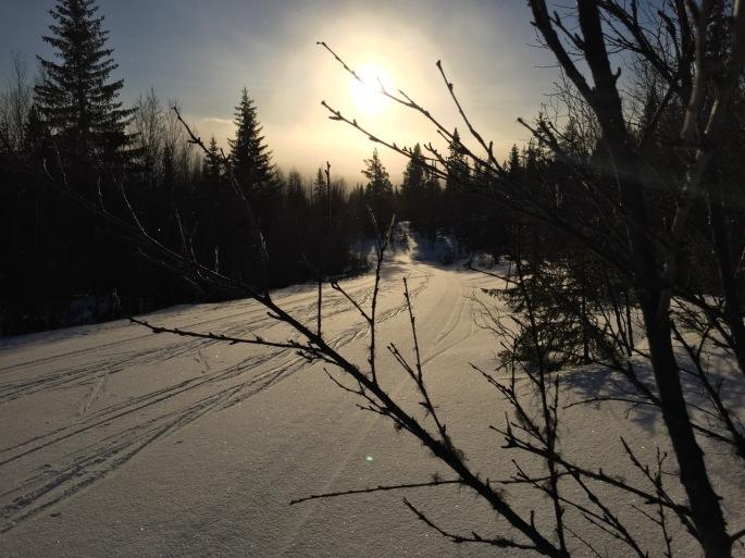 A beautiful sunny ski!